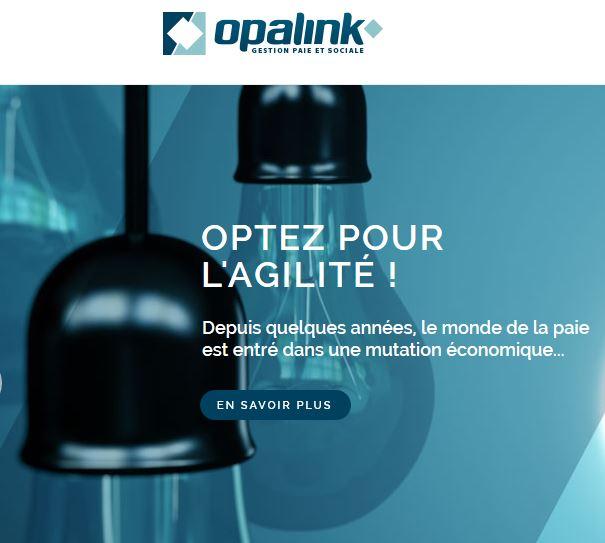 Opalink : «Pour nous le .bzh était une évidence»