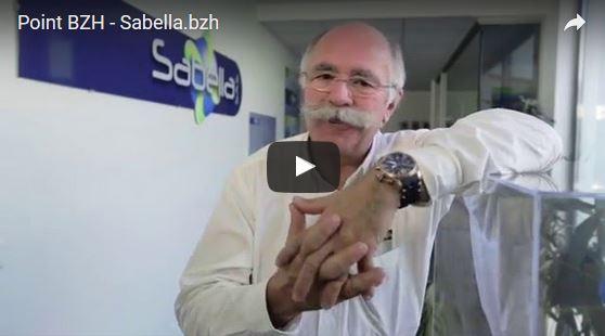 Sabella.bzh