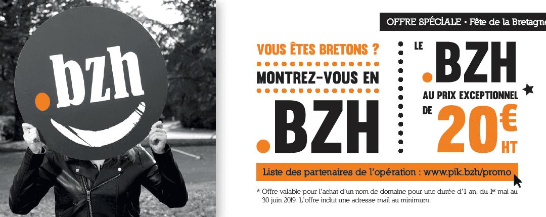 Votre nom en .bzh pour 20 € jusqu'au 30 juin 2019